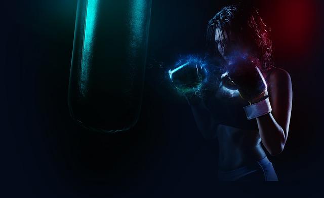 Boxer-1984344_640